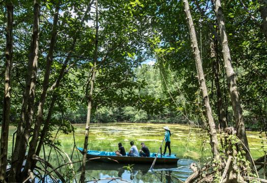 CAN GIO VAM SAT – MANGROVE FOREST