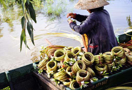 Mekong Delta- Phnom Penh by Waterways