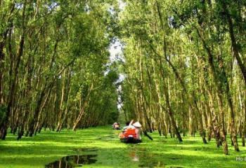 TRA SU FOREST - FLOATING SEASON DESTINATION